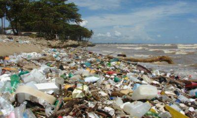 Senado aprobó ley que prohíbe uso de plásticos en San Andrés