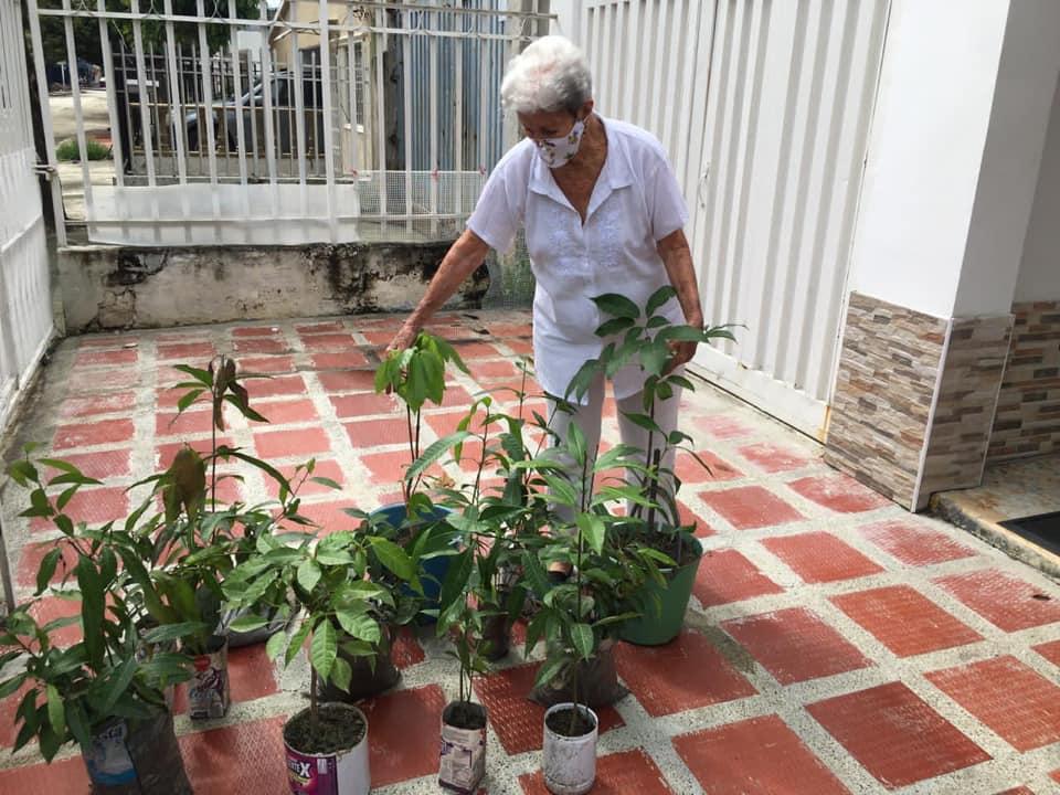 Corpamag lideró jornada de siembra de árboles en barrios de Santa Mart (1)