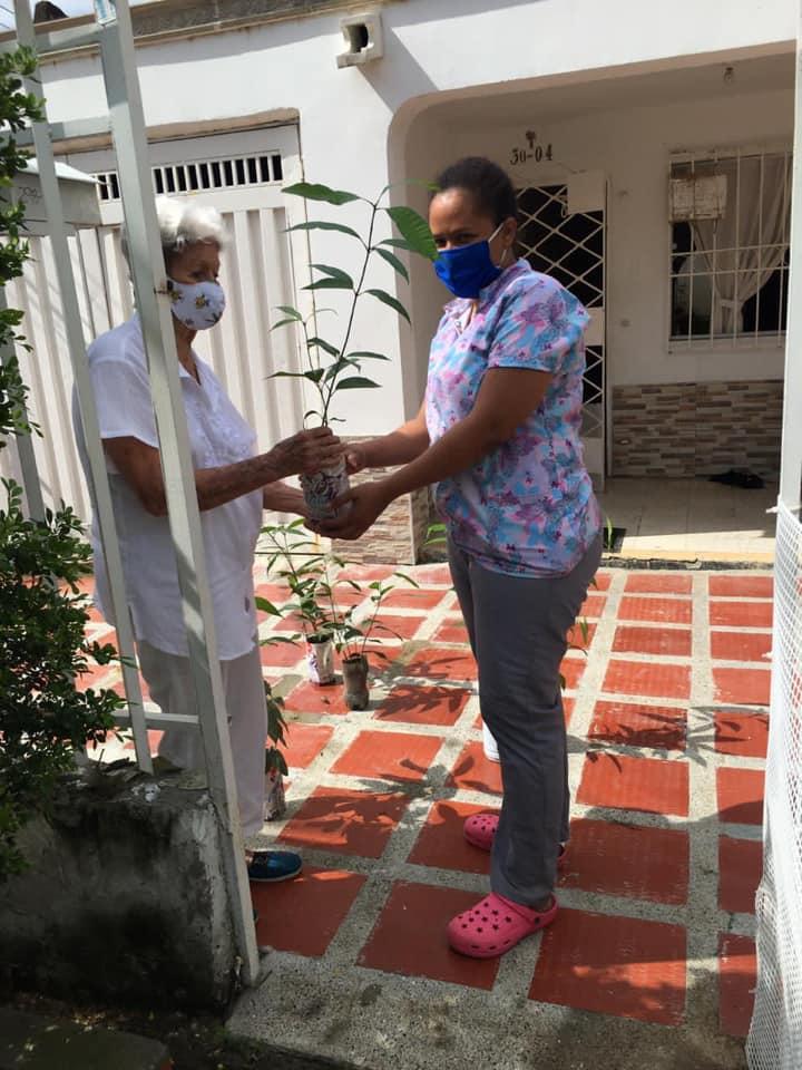 Corpamag lideró jornada de siembra de árboles en barrios de Santa Mart (3)